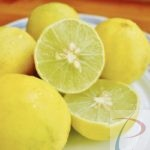 Nimbu Lemon निम्बू