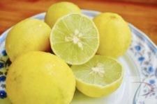 Nimbu Lemon निम्बू