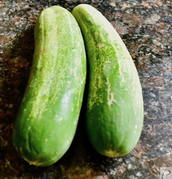 Cucumber खीरा
